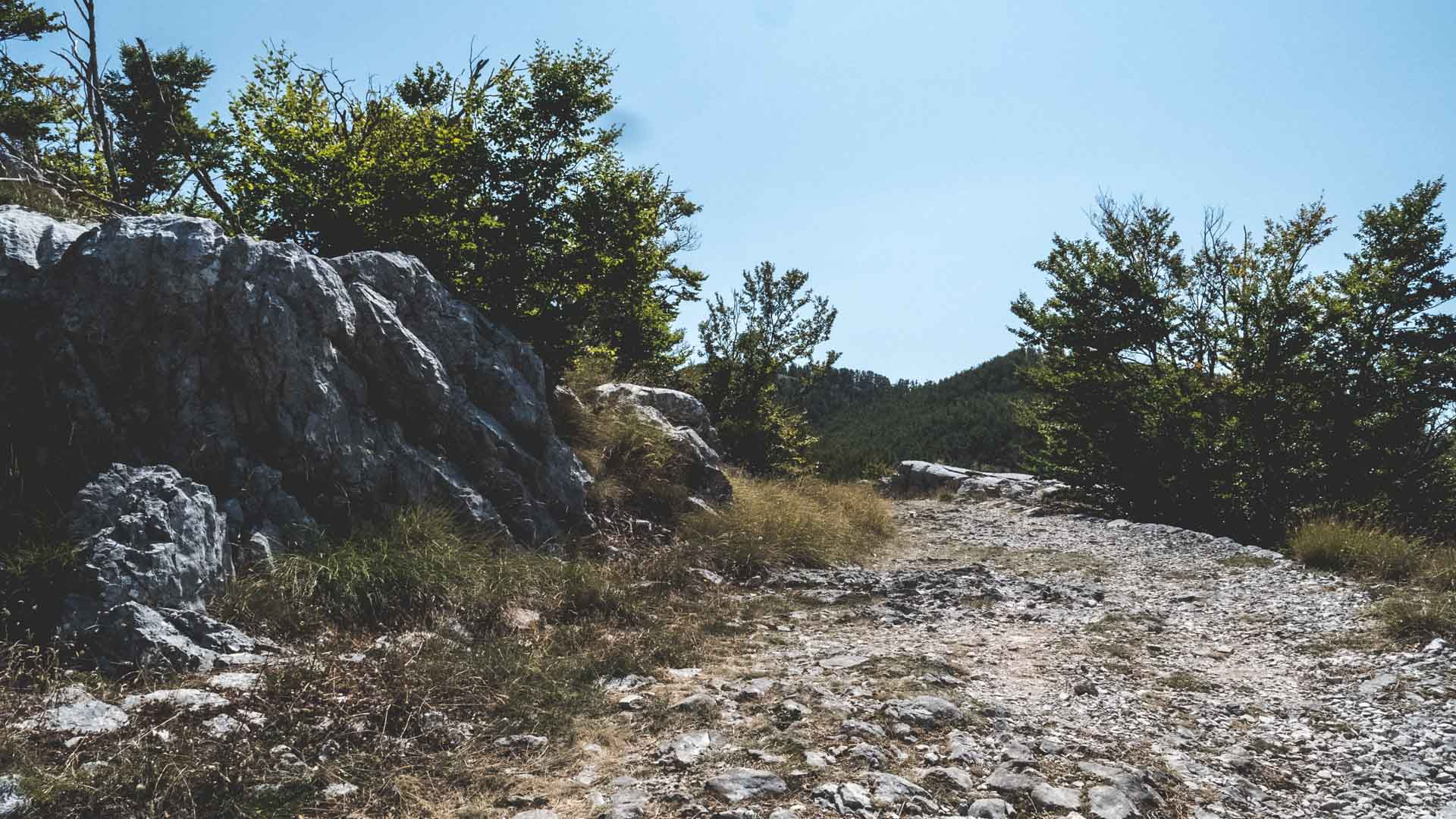 Hike the Wolf trail in Lovcen National Park